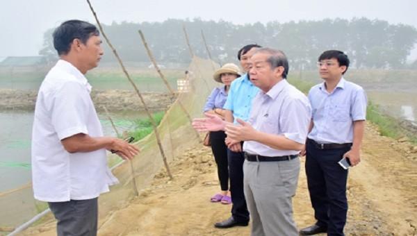 Chủ tịch UBND tỉnh Phan Ngọc Thọ trong một lần kiểm tra tình hình sản xuất của bà con nông dân.