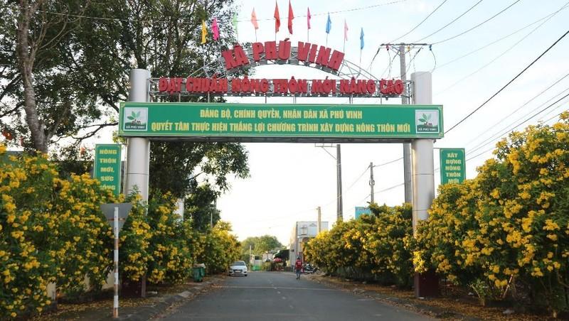 """Ngắm hoa Chuông Vàng rực rỡ """"dát vàng"""" nông thôn mới ở Đồng Nai"""