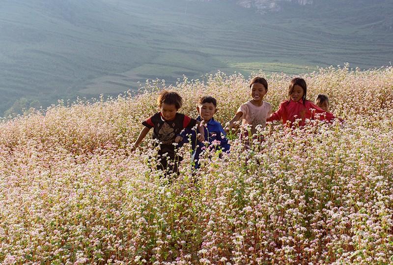 Hồn nhiên trẻ em vùng cao Lào Cai