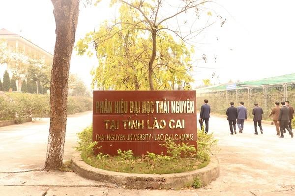 Phân hiệu Đại học Thái Nguyên tại tỉnh Lào Cai - Khẳng định vị thế từ công tác đào tạo