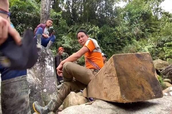 Yêu cầu khẩn trương điều tra vụ việc 'moi ruột' Vườn quốc gia Hoàng Liên