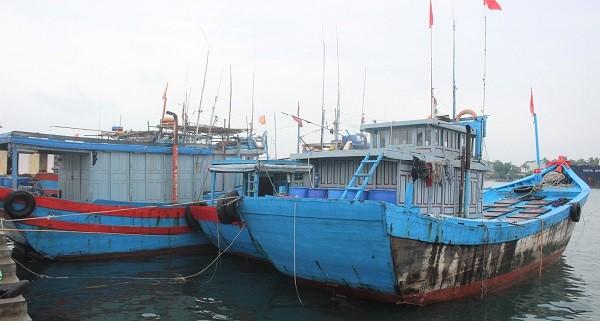 Áp thấp đe dọa, 129 tàu cá với hơn 3.000 lao động còn hoạt động trên biển