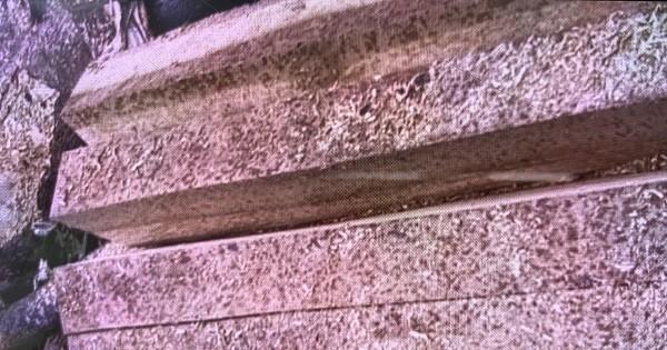 Số gỗ còn tại hiện trường.