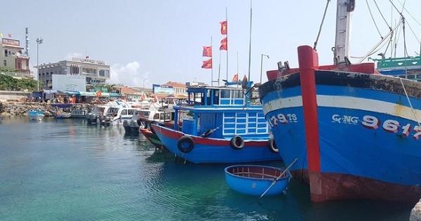 Cần 400 tỷ đồng để xây dựng khu neo đậu tránh trú bão kết hợp cảng cá Tịnh Hòa