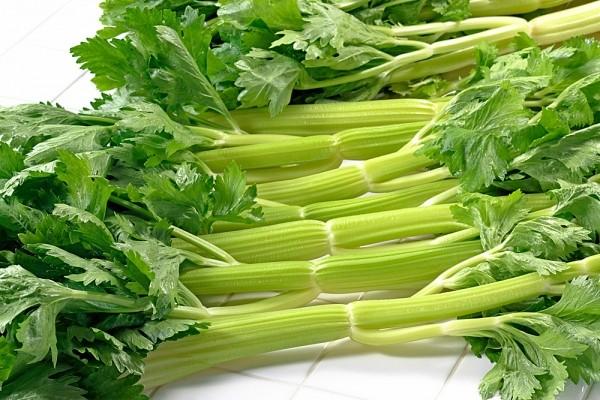 Kết quả hình ảnh cho rau cần tây