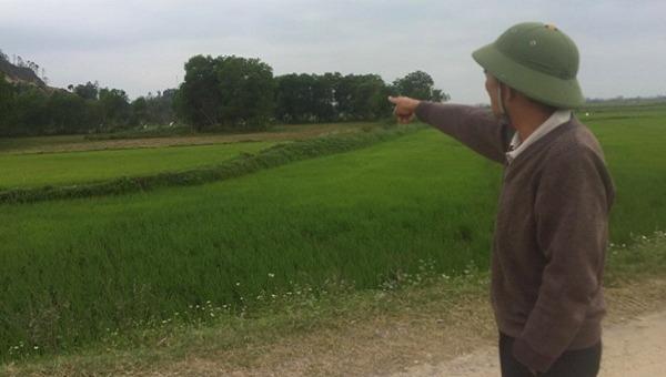 Tạm dừng dự án lò giết mổ gây tranh cãi tại Quảng Bình