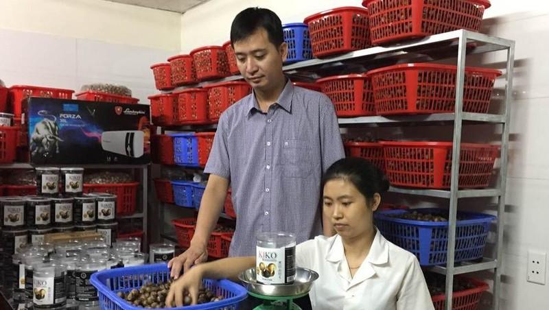 Cơ sở sản xuất và mua bán tỏi đen KiKo ở thôn Phương Trù, xã Yên Phương (Yên Lạc) được khách hàng ưa chuộng