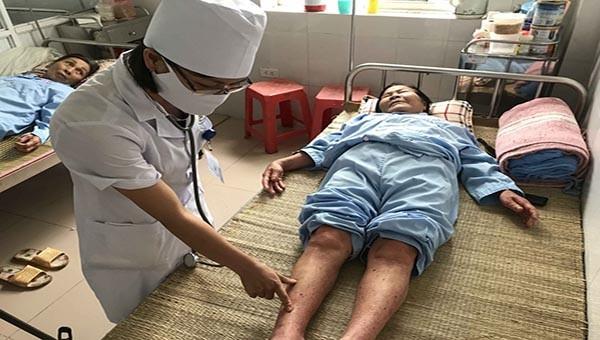 Tỉnh Bắc Ninh đã ghi nhận 5 ổ dịch sốt xuất huyết với 7 ca bệnh.