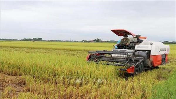 Áp dụng khoa học – công nghệ tiên tiến trong sản xuất nông nghiệp tại Thái Nguyên.