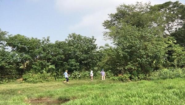 Vĩnh Tường (Vĩnh Phúc): Thu hồi đất để nâng cấp đường giao thông