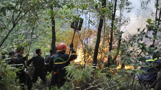 Cảnh báo nguy cơ cháy rừng cấp cực kỳ nguy hiểm tại Bắc Giang