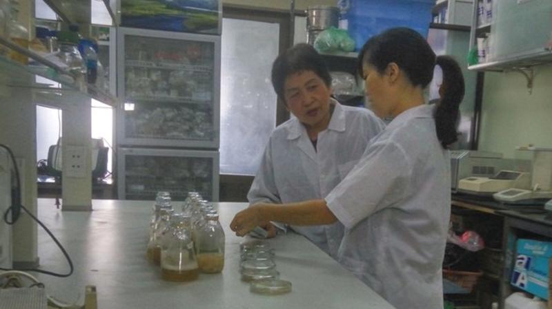 PGS.TS Đặng Thị Cẩm Hà đang trao đổi với cộng sự về khả năng phân hủy sinh học của những tổ hợp vi sinh vật, tổ hợp nấm mới đối với một số loại túi và cốc nhựa (Ảnh: Cục Sở hữu trí tuệ)