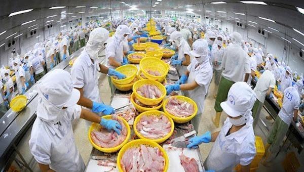 Đề nghị bổ sung ngành chế biến, kinh doanh thủy sản vào đối tượng gia hạn nộp thuế
