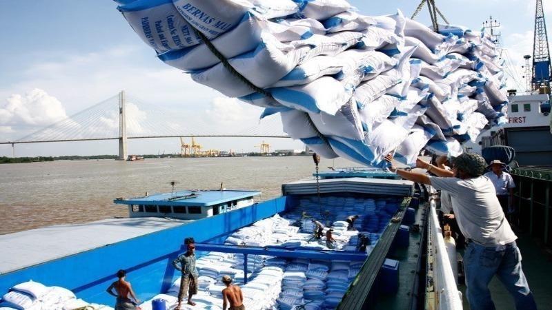 """Xuất khẩu gạo đang là vấn đề """"nóng"""" những ngày qua."""