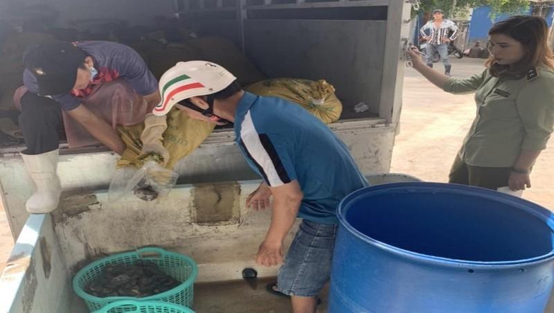 Toàn bộ số hàng hóa trong các bao tải là Hải sâm, con banh lông - thủy sản nguy cấp, quý hiếm.