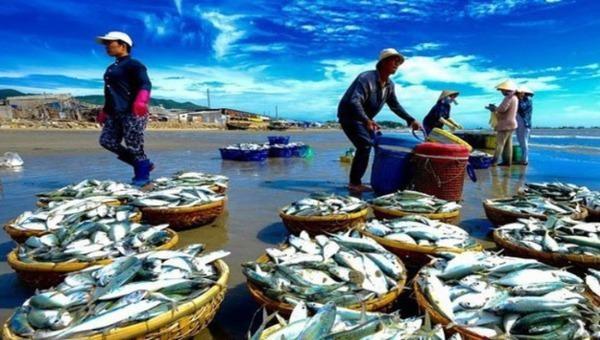 Các đối tượng lừa đảo lập website giả danh các công ty xuất khẩu thủy sản có thật với đầu mối liên hệ là giả mạo.