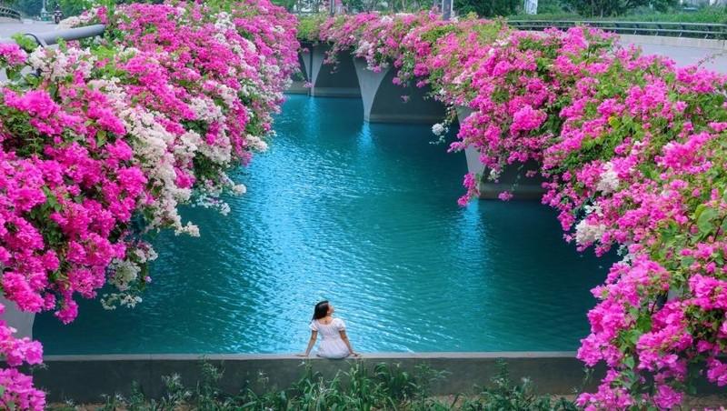 Những góc cảnh đẹp mê hồn tại Cây cầu hoa giấy ở Ecopark
