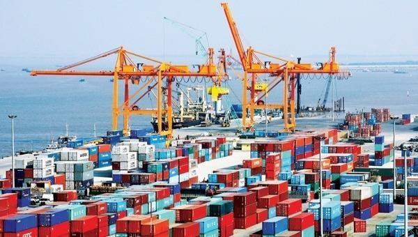 Dịch vụ kho bãi của Tổng Công ty Tân cảng Sài Gòn.