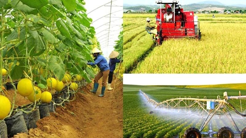 Kéo dài thời hạn thực hiện hạng đất tính thuế sử dụng đất nông nghiệp