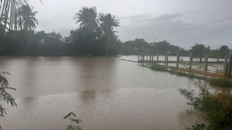 Học sinh toàn tỉnh Ninh Thuận phải nghỉ học do mưa lớn, ngập lụt