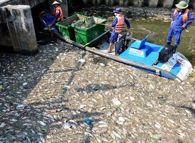 Cá chết trắng trên kênh Nhiêu Lộc - Thị Nghè vào năm 2016