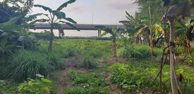 Một thửa đất nông nghiệp đã có chủ sở hữu khác nhưng lại được giao bán cho bà Nguyệt.