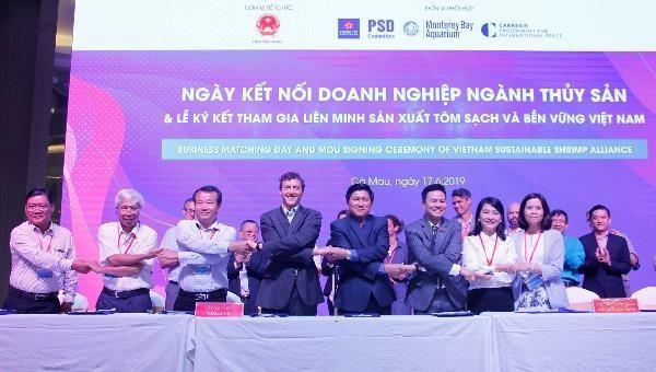Cà Mau tham gia Liên minh sản xuất tôm sạch và bền vững Việt Nam