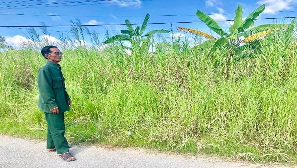 Người dân bức xúc vì Dự án nhà ở cho người nghèo động thổ rồi bỏ hoang cho cỏ mọc