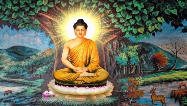 Cây bồ đề gắn với hình ảnh Đức Phật