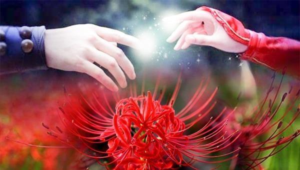 Truyền thuyết về hoa bỉ ngạn - Loài hoa thức tỉnh ái tình