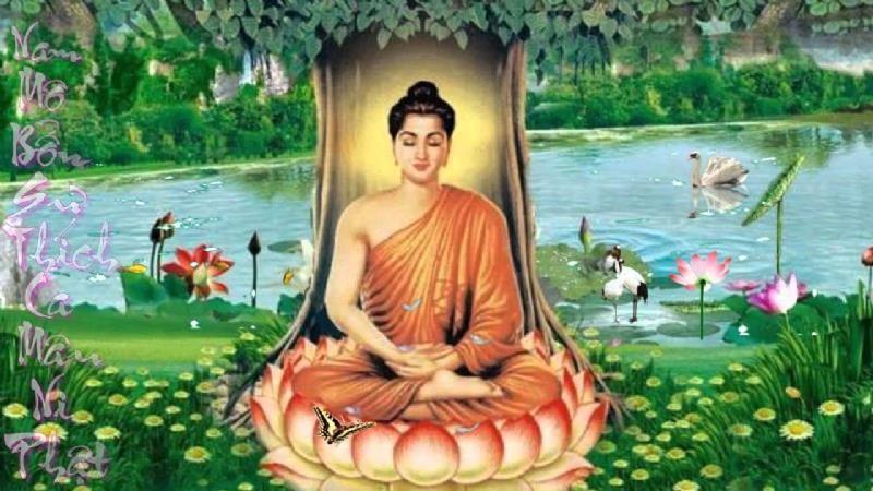 """Ngẫm về """"định luật vô thường"""" của đức Phật Thích Ca Mâu Ni"""