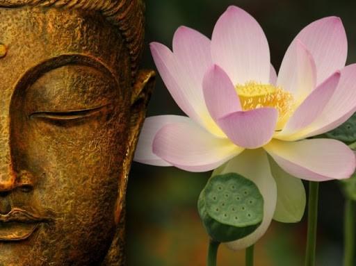Những học thuyết kinh điển trong giáo lý nhà Phật- Kỳ 1: Học thuyết vô thường