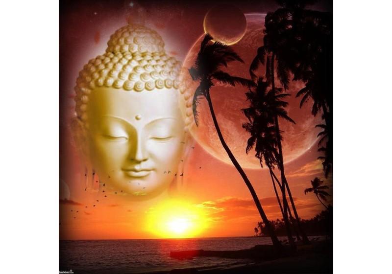 Những học thuyết kinh điển trong giáo lý nhà Phật- Kỳ 3: Thuyết nhân quả – nghiệp báo