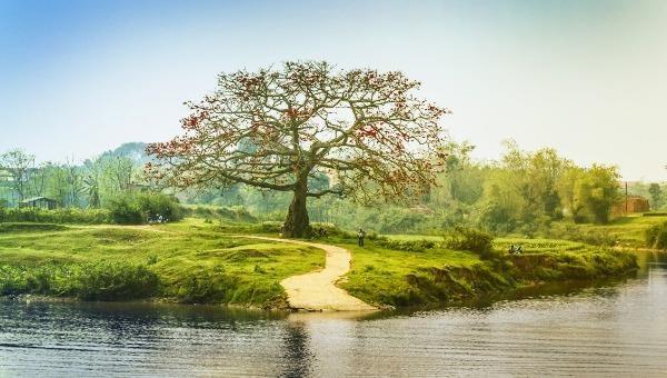Có một sông Thương chảy vào thơ