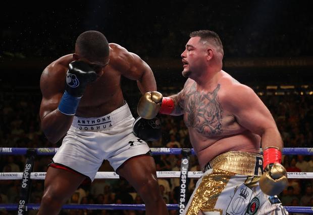 Vì sao Anthony Joshua gục ngã trước gã béo Andy Ruiz?