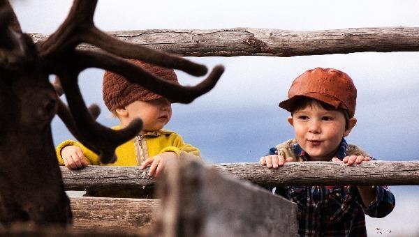Vùng nông thôn Lapland đổi mới để nâng cao chất lượng sống cho cư dân (Ảnh: Antti Pietikäinen).