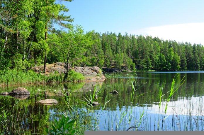 Đất ngập nước là một trong những cảnh quan quan trọng ở Phần Lan.