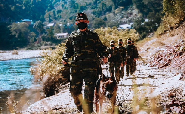 Bộ đội biên phòng Nghệ An làm công tác tuần tra đường biên giới.