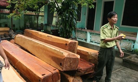 Bắt giữ xe chở lậu gỗ Dạ Chồn