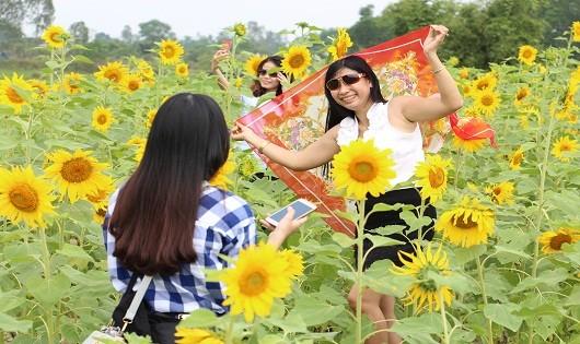Nhiều bạn trẻ tạo dáng bên vườn hoa.