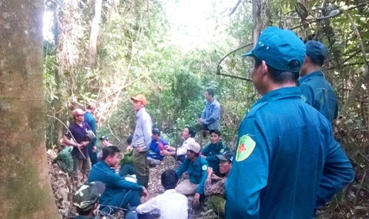 Cơ quan chức năng xã Bình Điền và gia đình vẫn đang nỗ lực tìm kiếm tung tích ông Nguyễn Đinh Thọ.