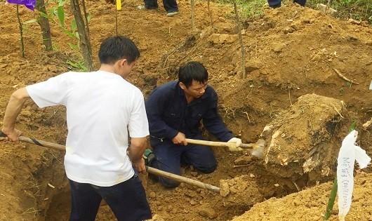 Đội Quy tập hài cốt liệt sỹ Đoàn Kinh tế quốc phòng 337 đang tìm kiếm hài cốt liệt sỹ tại vườn tràm nhà dân