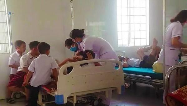 26 học sinh Tiểu học nhập viện cấp cứu vì ong đốt trong giờ ra chơi