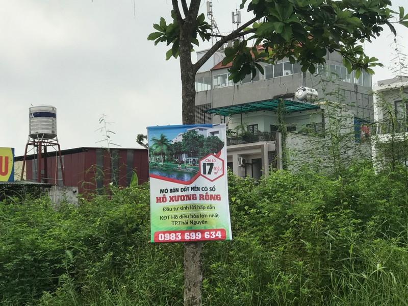 Công ty môi giới quảng cáo rao bán đất ở dự án khu đô thị Hồ Xương Rồng khắp nơi