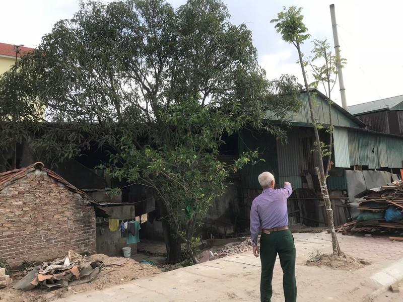 Khu vực này là đất của ông gia đình ông Tân và 3 gia đình khác từ nhiều năm UBND xã mượn để cho thuê