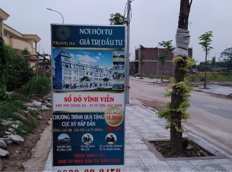 Từ Sơn (Bắc Ninh): 'Bát nháo' trong việc tư vấn bán đất nền tại Dự án xây dựng khu nhà ở phường Trang Hạ