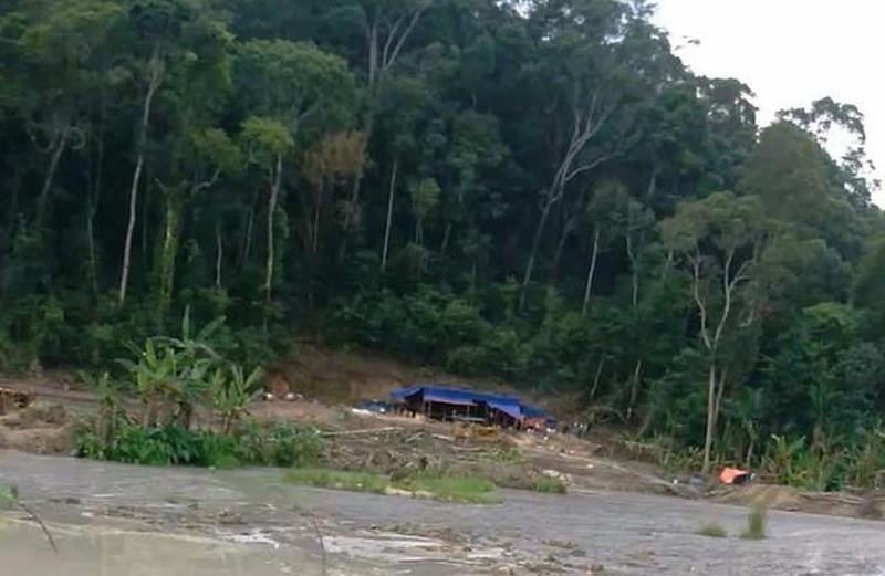 Bị phạt gần 200 triệu vì khai thác vàng trong đất rừng do doanh nghiệp quản
