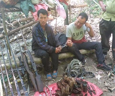 Bắt giữ nhóm săn trộm chuyên nghiệp ở Vườn Quốc gia Chư Yang Sin