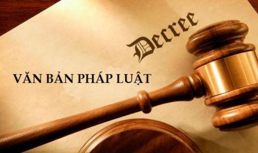 Xử lý tiền bán đấu giá khi bản án, quyết định của Tòa án bị hủy thế nào?