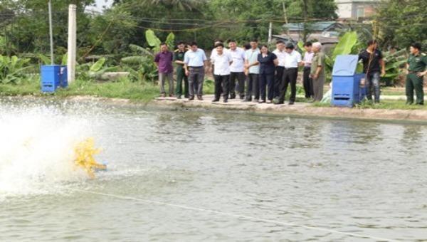 """Ban Dân vận Tỉnh ủy Ninh Bình kiểm tra thực tế mô hình """"Dân vận khéo"""" phát triển kinh tế tại Hợp tác xã nuôi trồng thủy sản Văn Phong."""